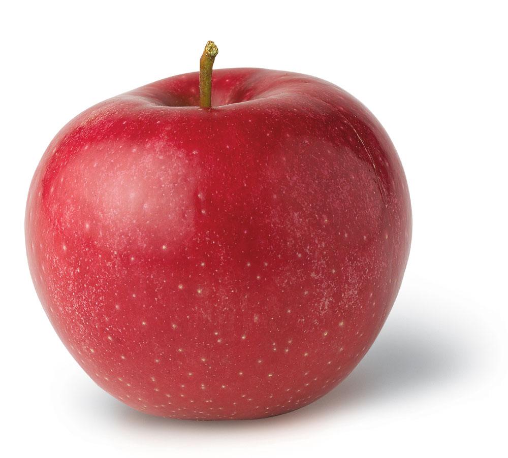 Яблоко, фотография, обои