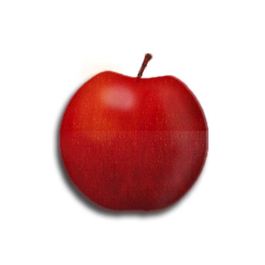 Яблоко, красное, фото