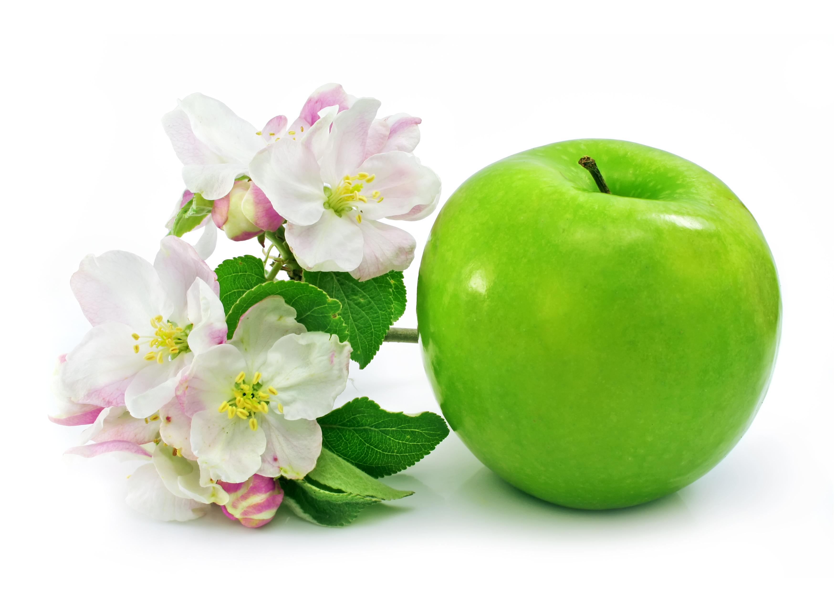 Яблоко зеленое с цветами яблони