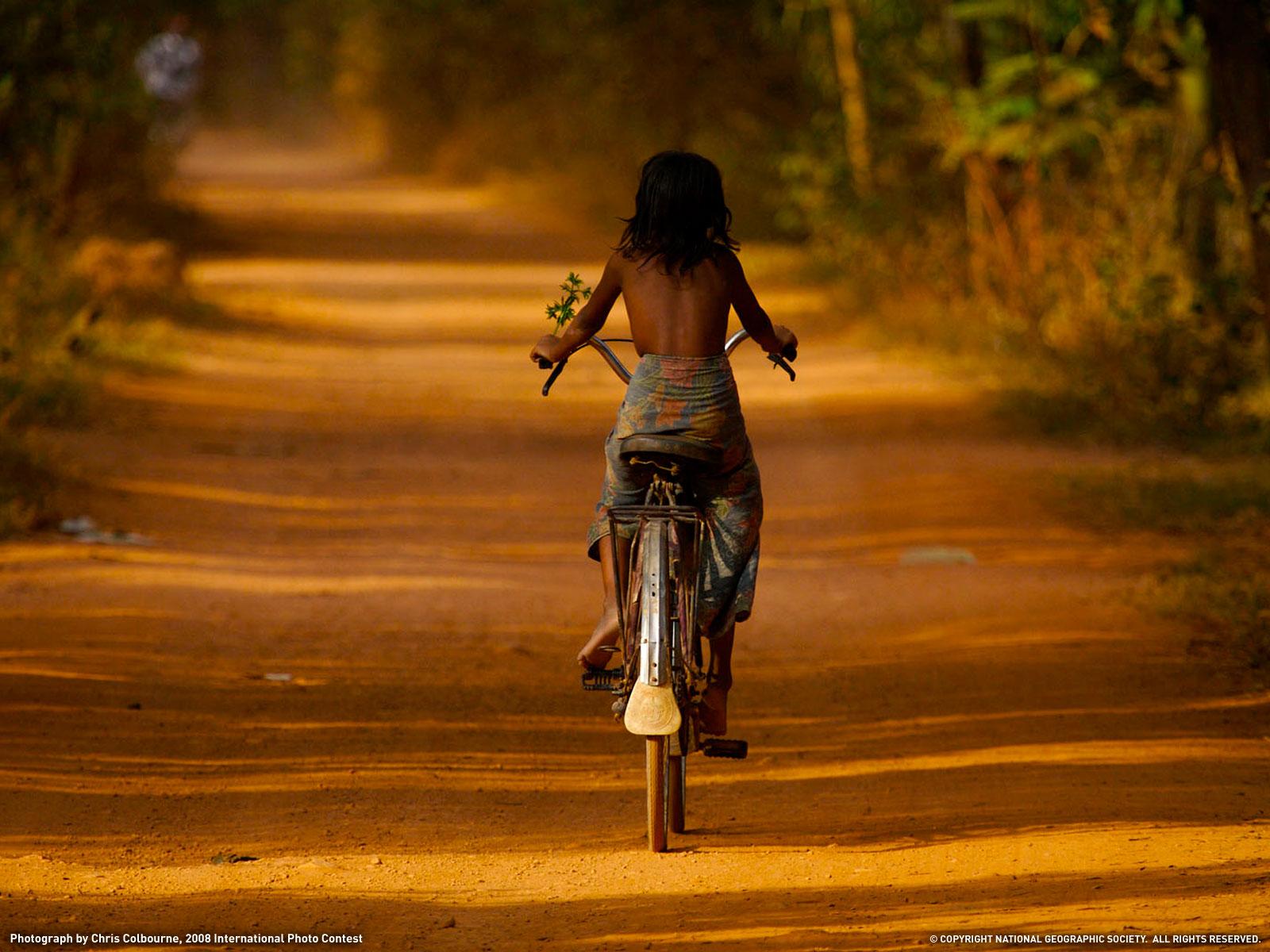 обои девушка и велосипед
