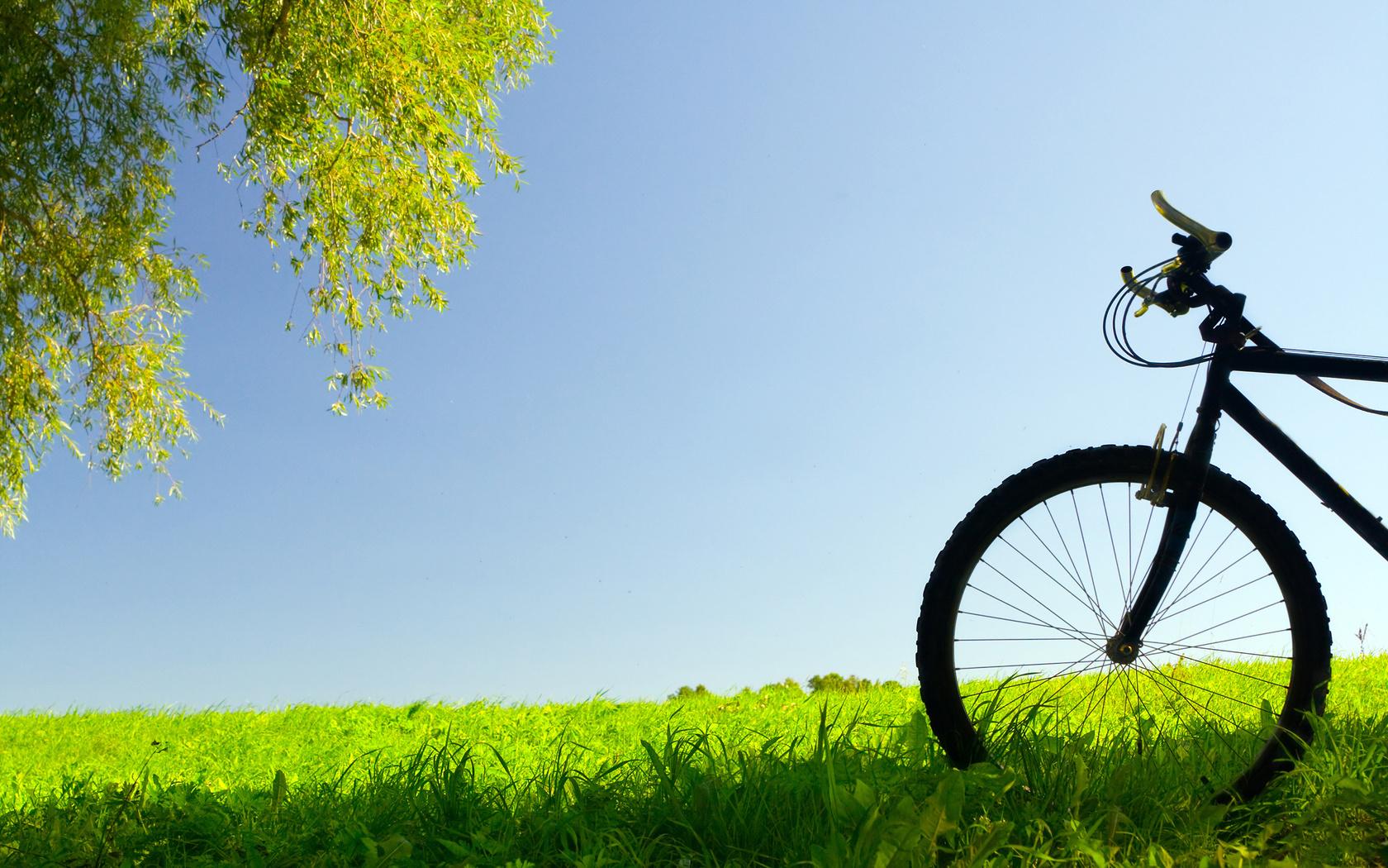 Обои, байк, трава, вело обои