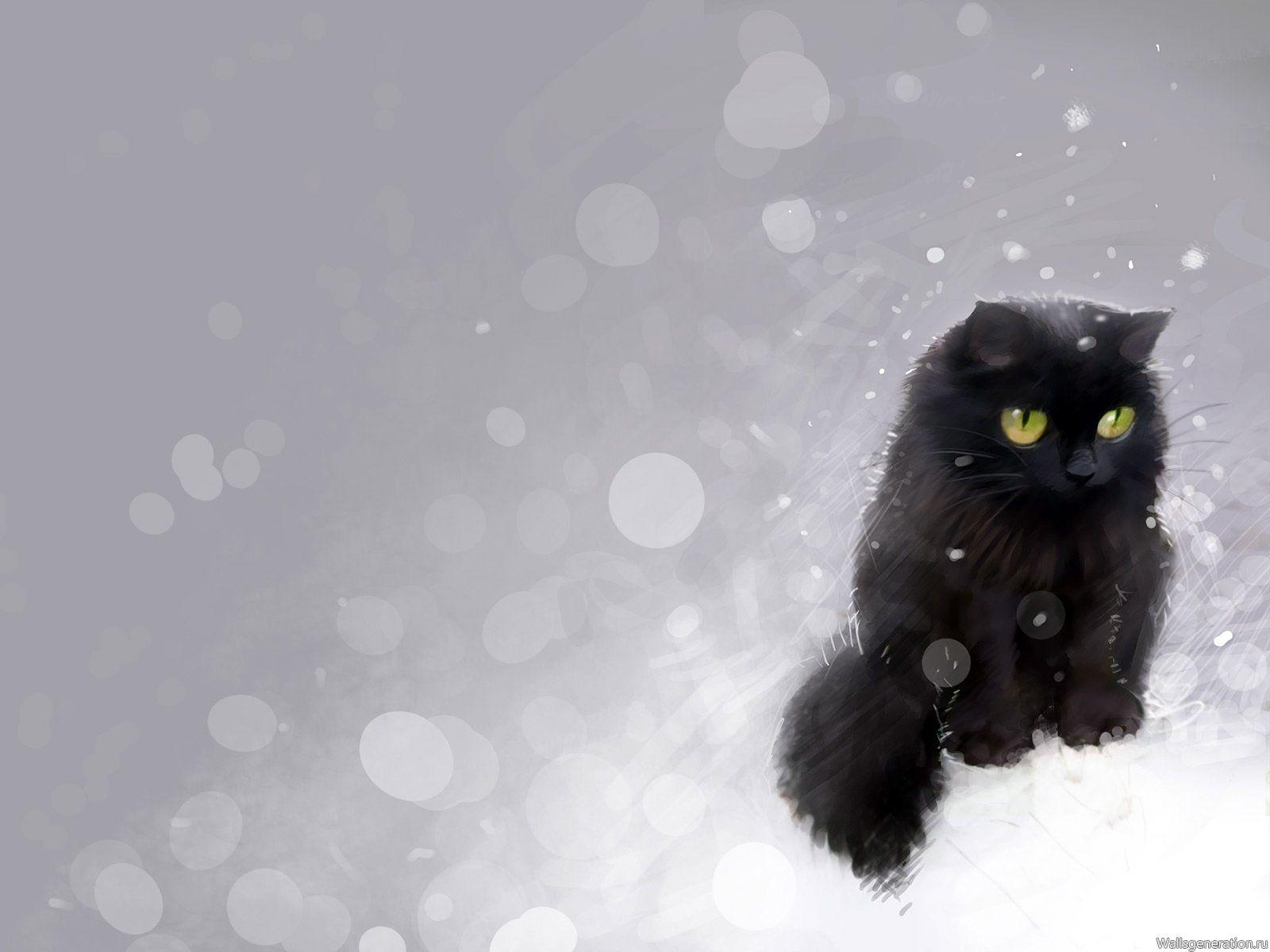 обои на рабочий стол, кот, кошка, котенок и снег