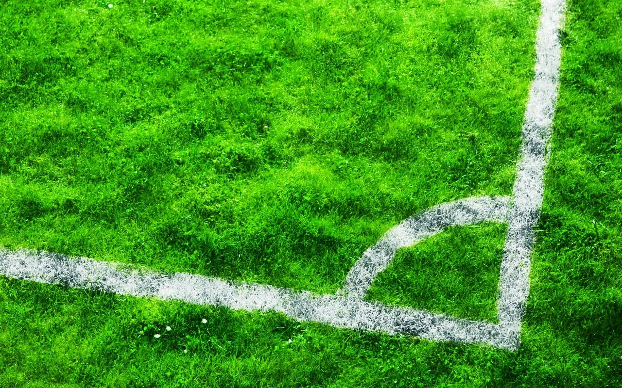 зеленая трава, газон, футбольное поле, обои для рабочего стола