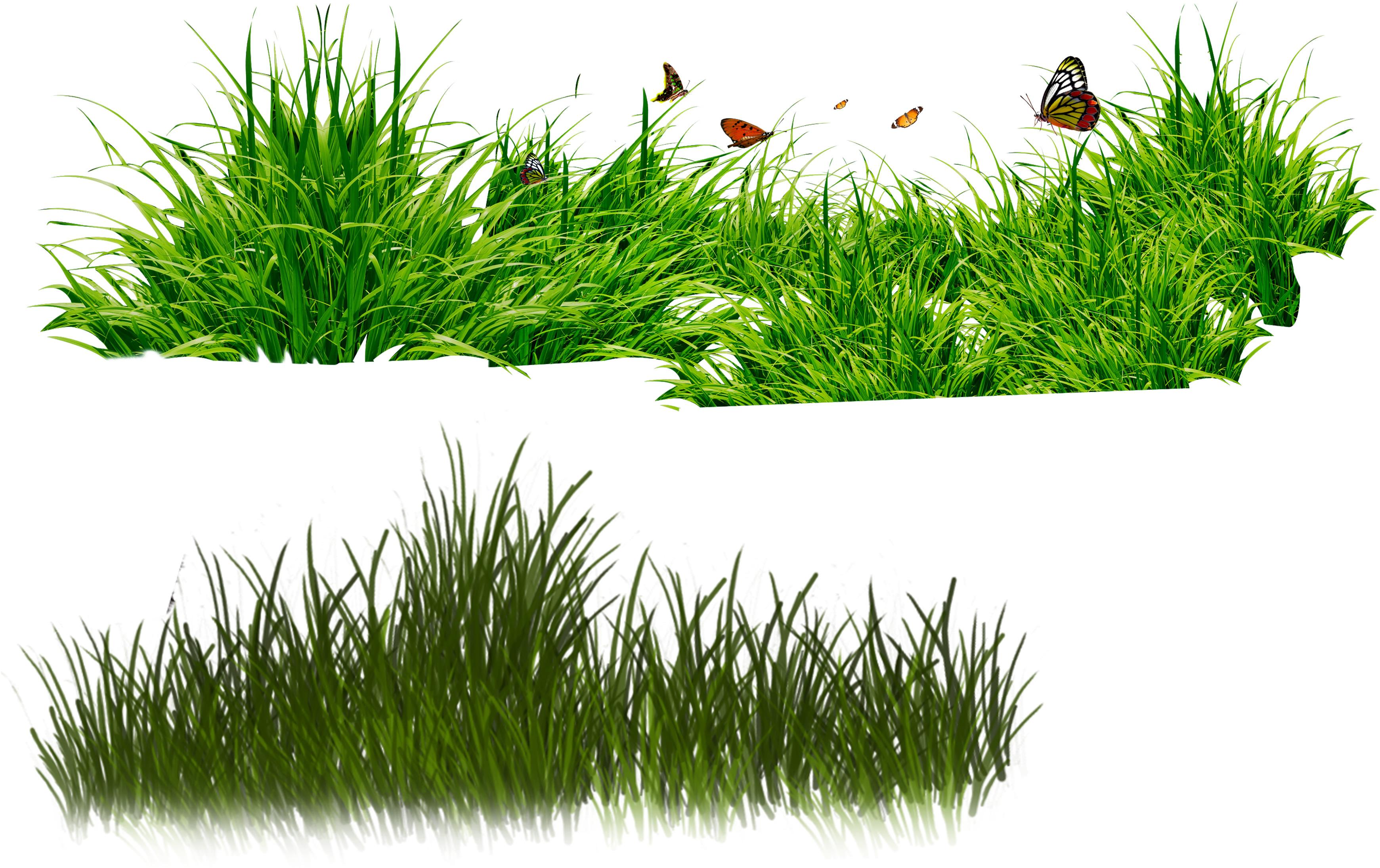 Трава зеленая, клипарт, бабочки, скачать бесплатно, обои