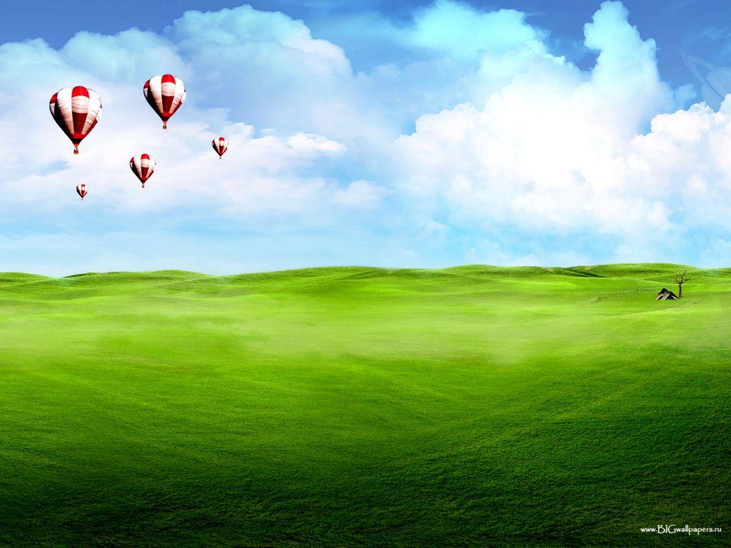 Зеленая трава, луг, газон и небо голубое, обои, красивое фото
