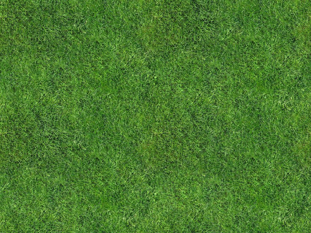 Скачать фотообои для рабочего стола: Зеленая трава, газон, обои, скачать фото