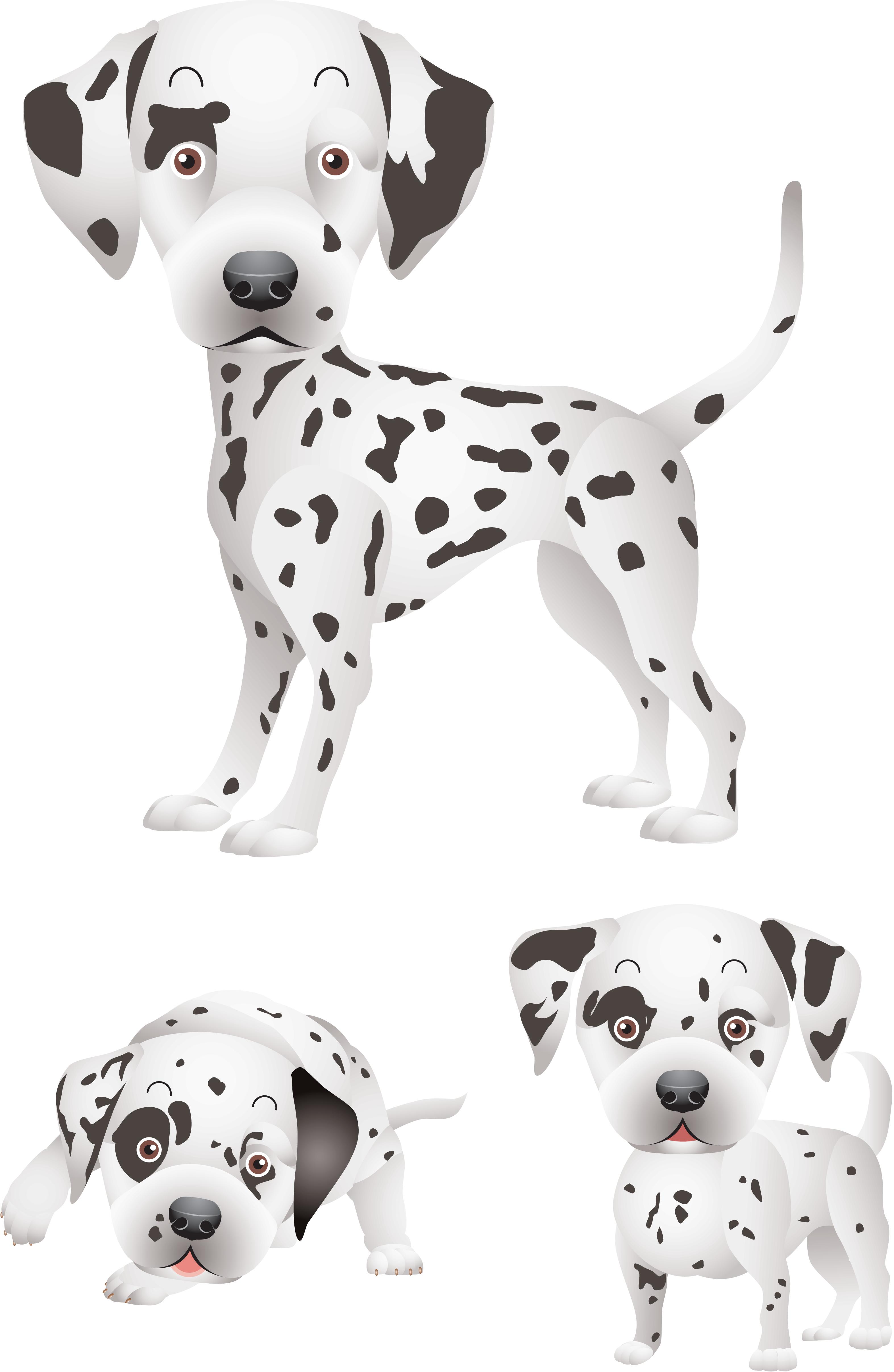 Клипарт, собаки, дог, для дизайна фото, долматинец
