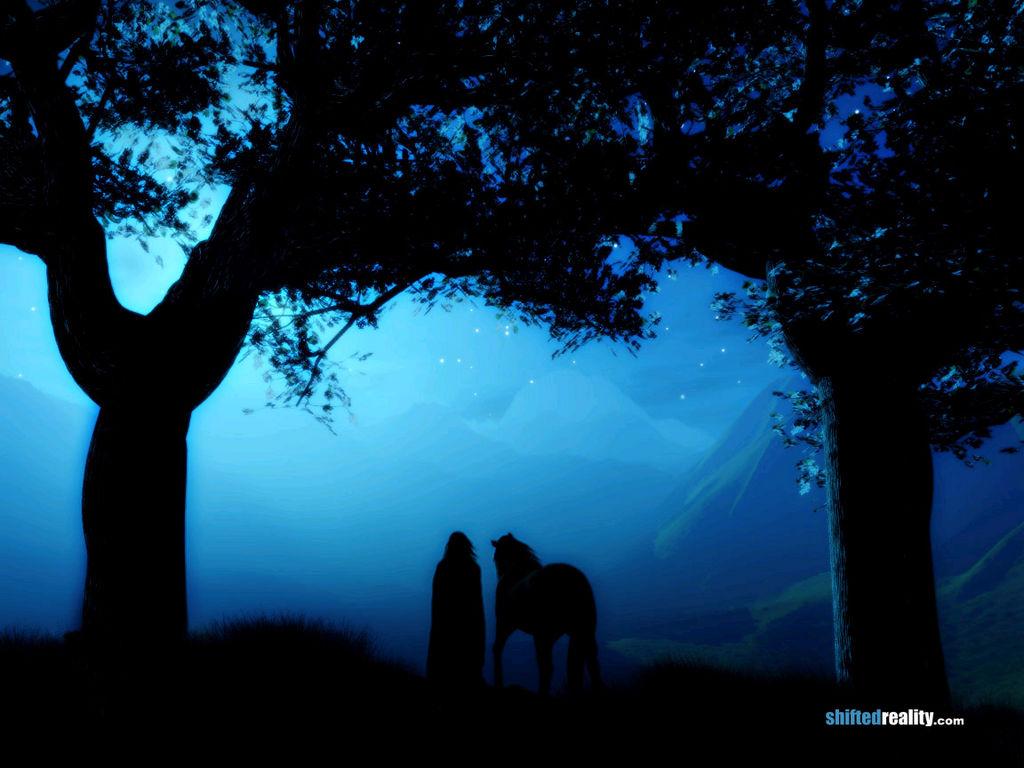 Вечер, ночь, лошадь и человек, конь, фото обои для рабочего стола