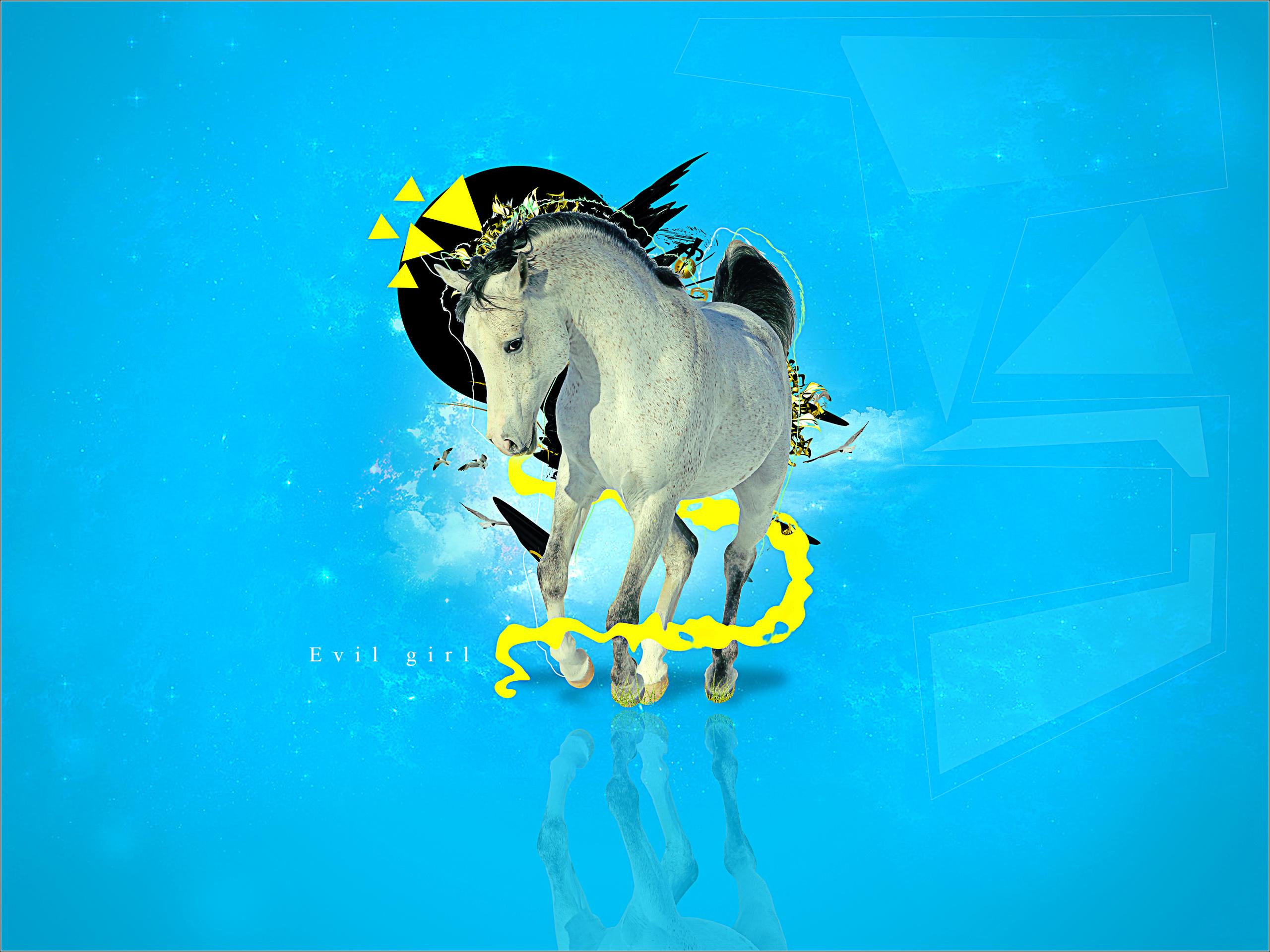обои для рабочего стола, фото, конь, лошадь, красиво