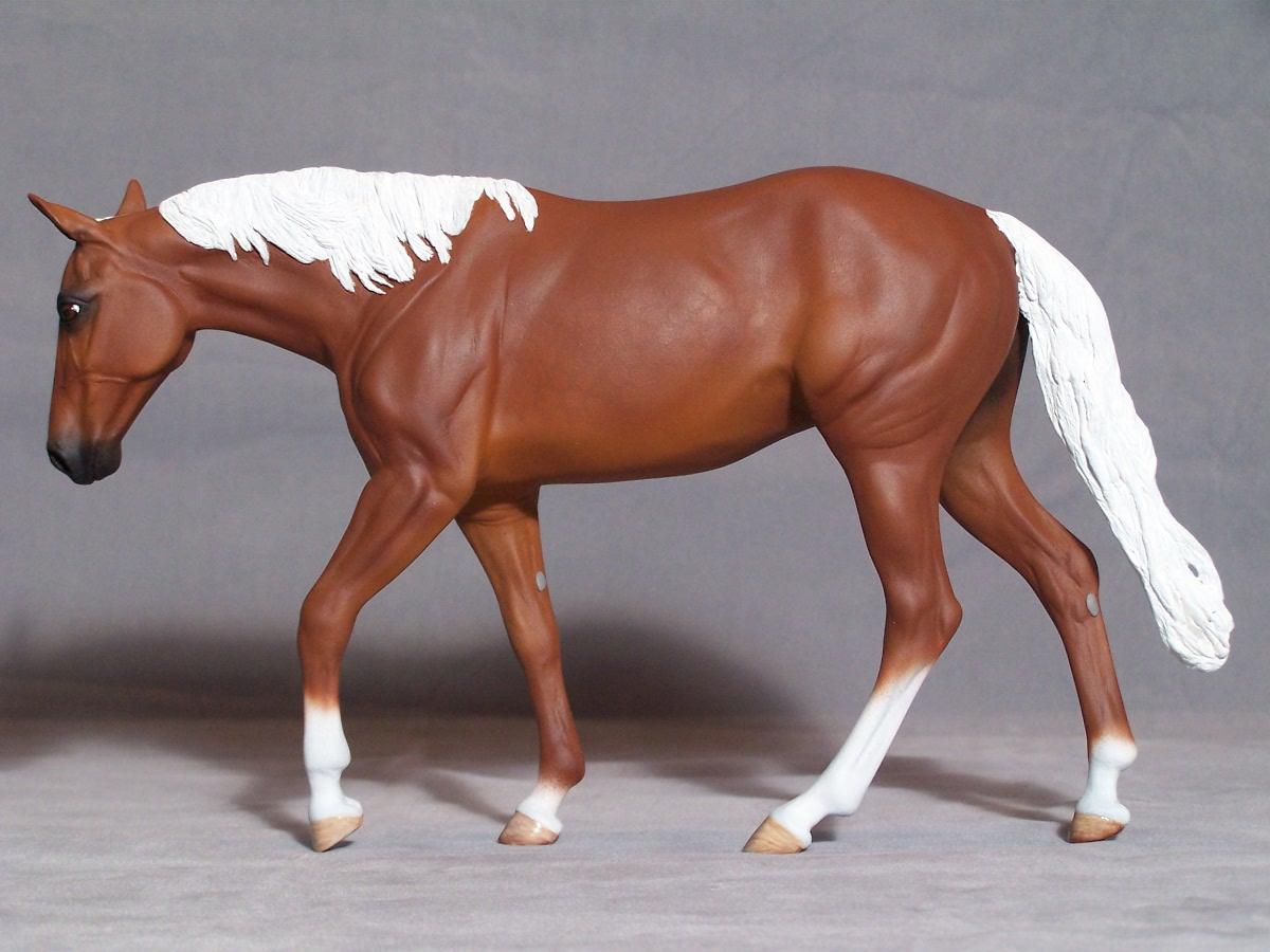 Лошадь, конь, фото, обои для рабочего стола