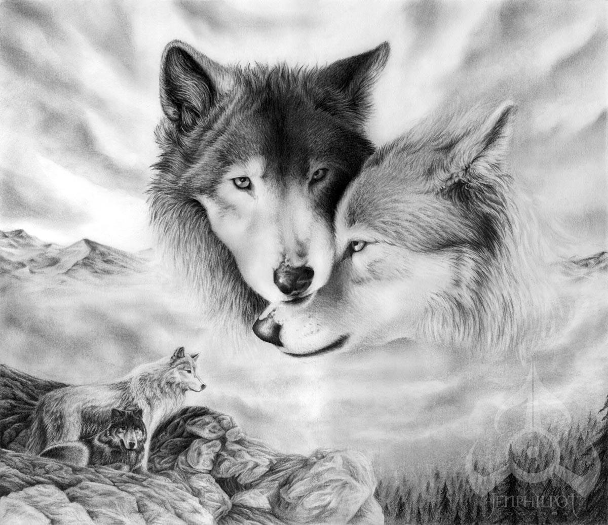 волки, фото, обои на рабочий стол, wolfs