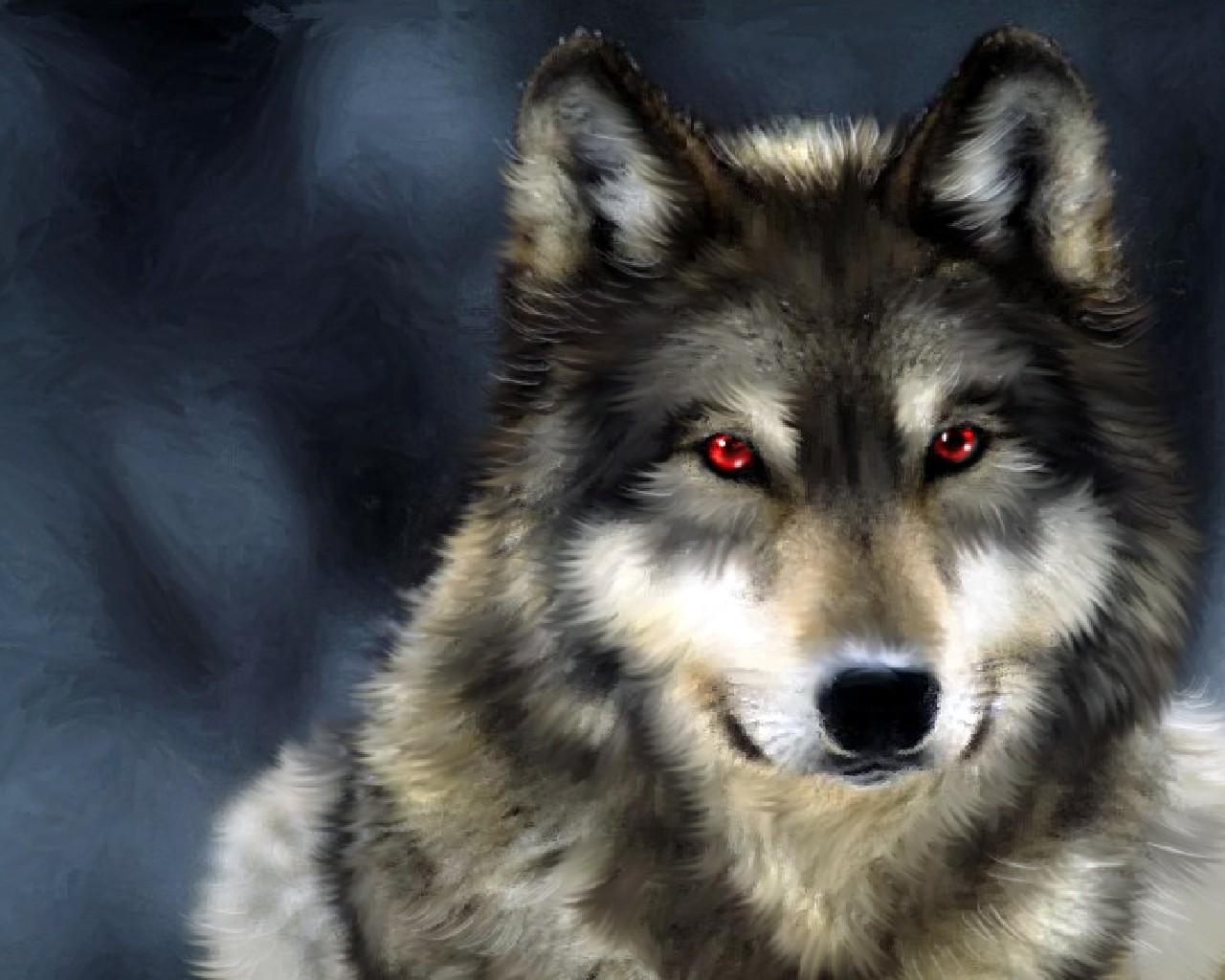 Wallpaper, фото, скачать, волк, обои для рабочего стола