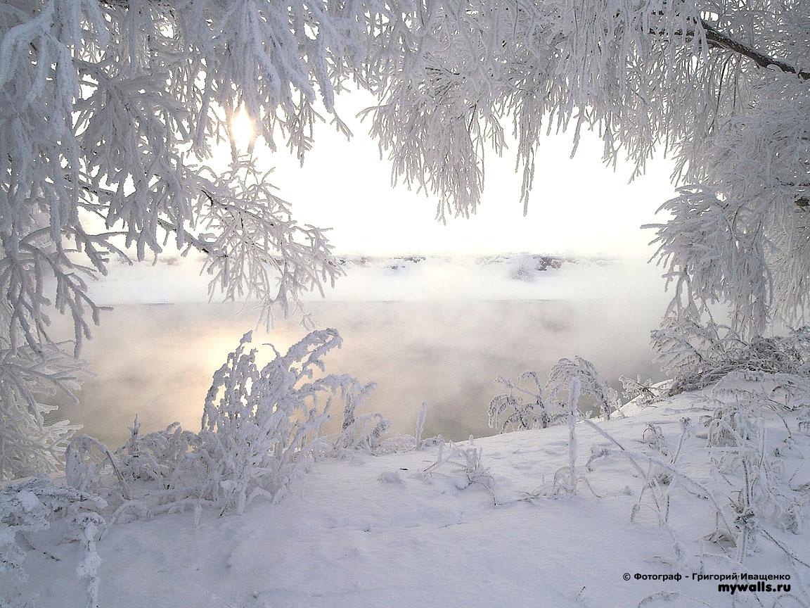 Обои на рабочий стол зима зимнее фото