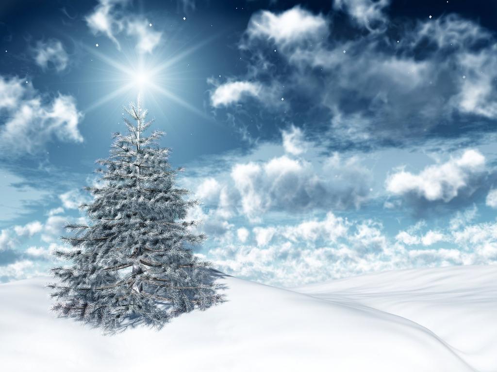 Ночь, елка, зима, снег, обои для рабочего стола, фото