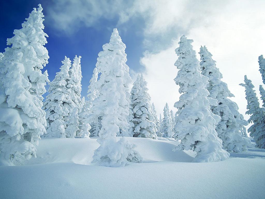 winter, snow, зима, фото, обои для рабочего стола, фото, скачать