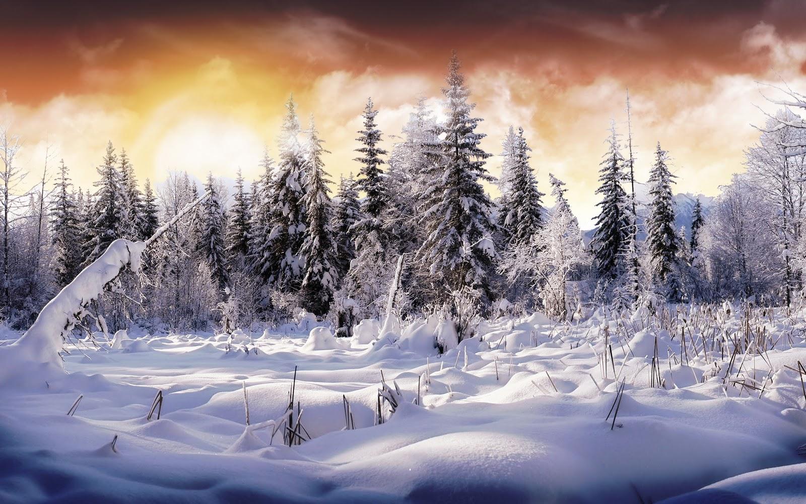 Зима, снег, обои для рабочего стола