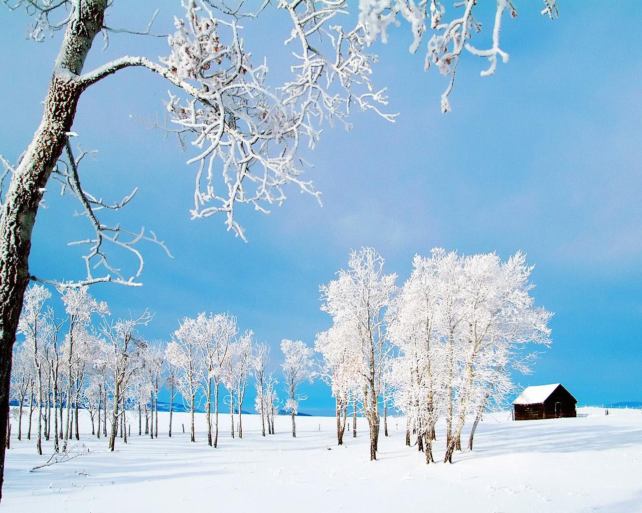 Зима, утро, мороз, небо, фото, обои для рабочего стола