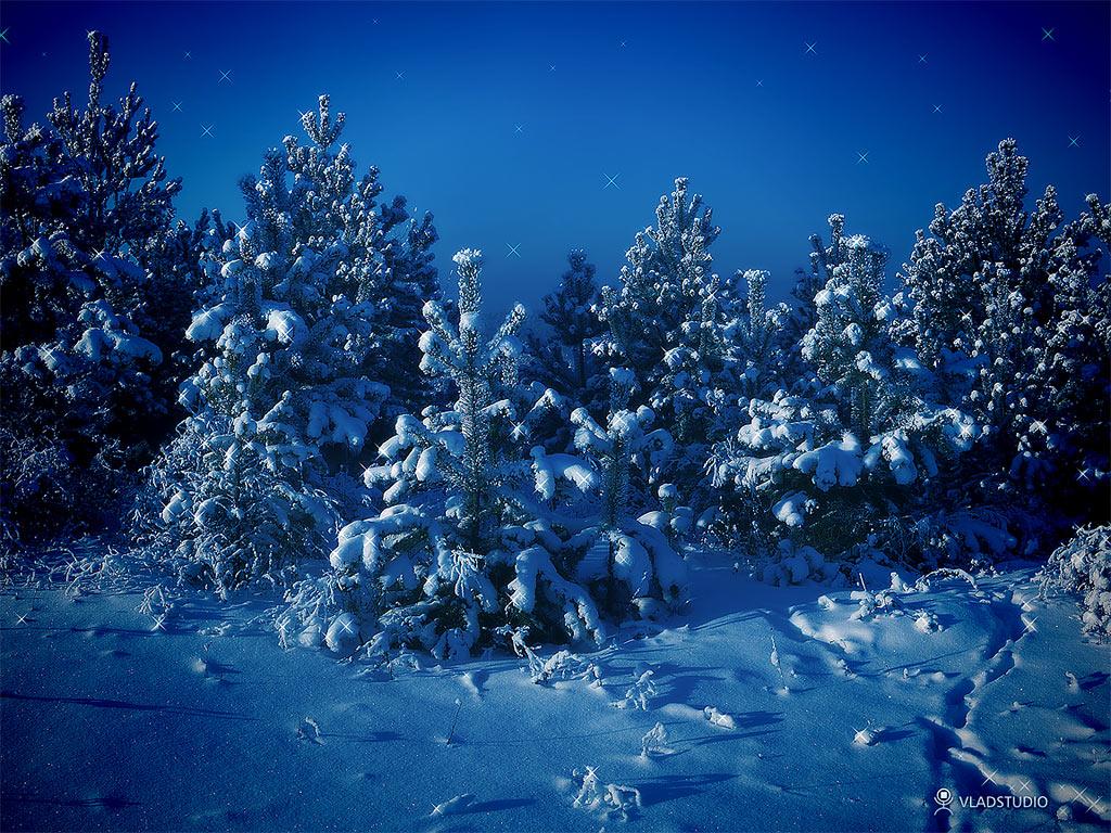 Ночь, мороз, снег, фото, обои на рабочий стол, зима