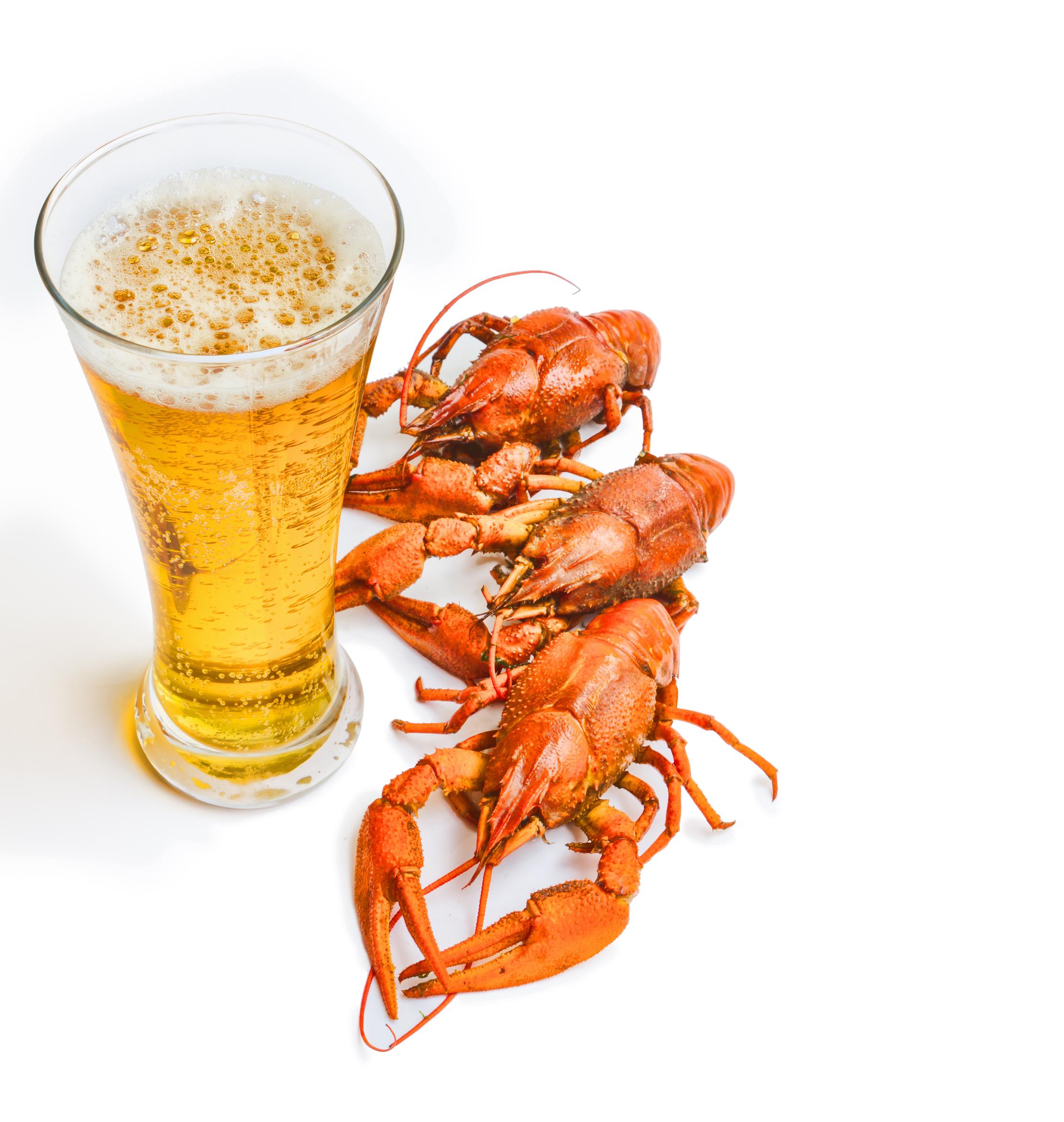 Пиво, фото, клипарт, обои для рабочего стола, скачать, beer, рак с пивом