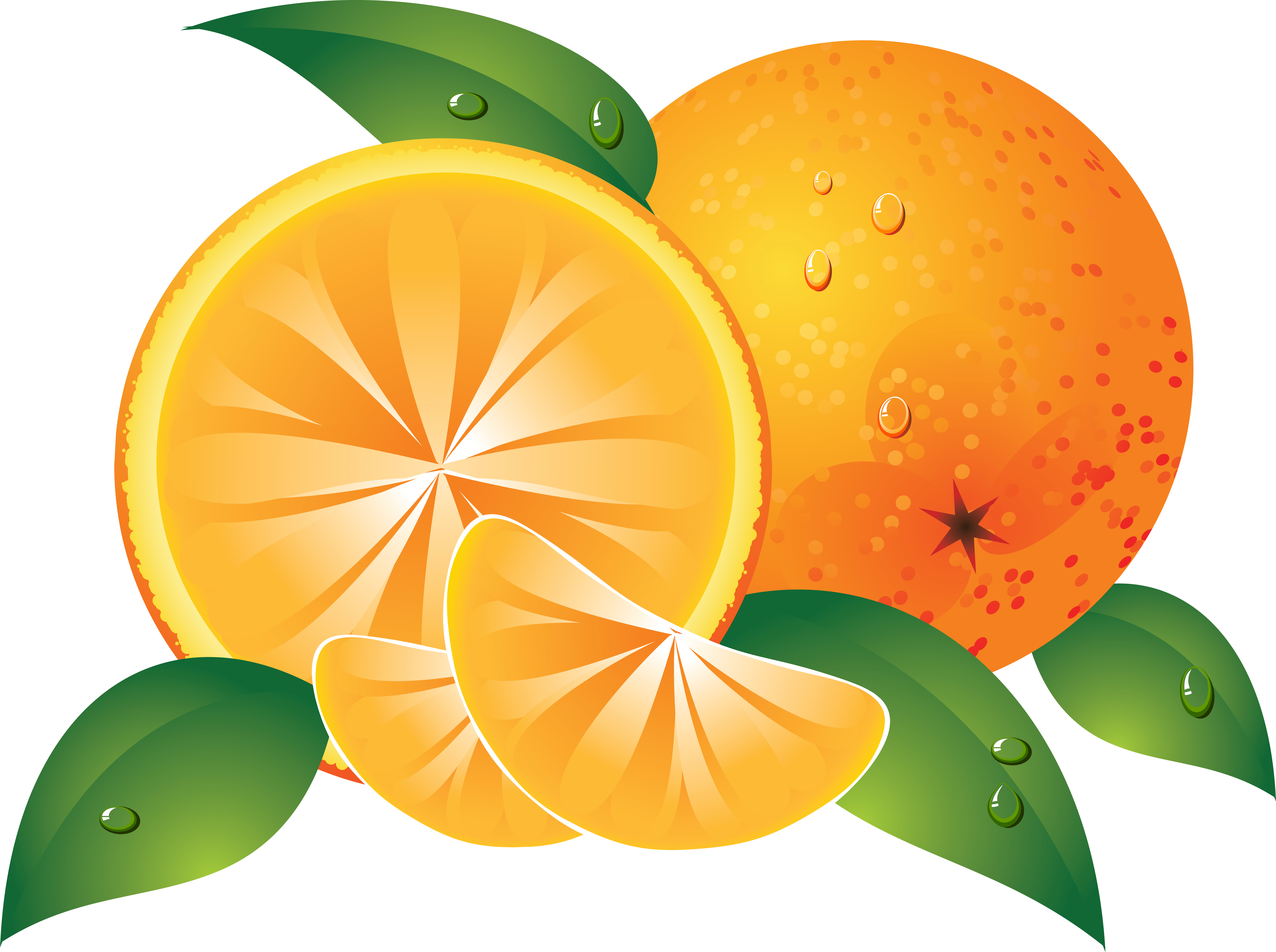 Клипарт, апельсины, фото, обои для рабочего стола