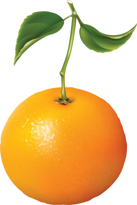 апельсин, фото, скачать, orange