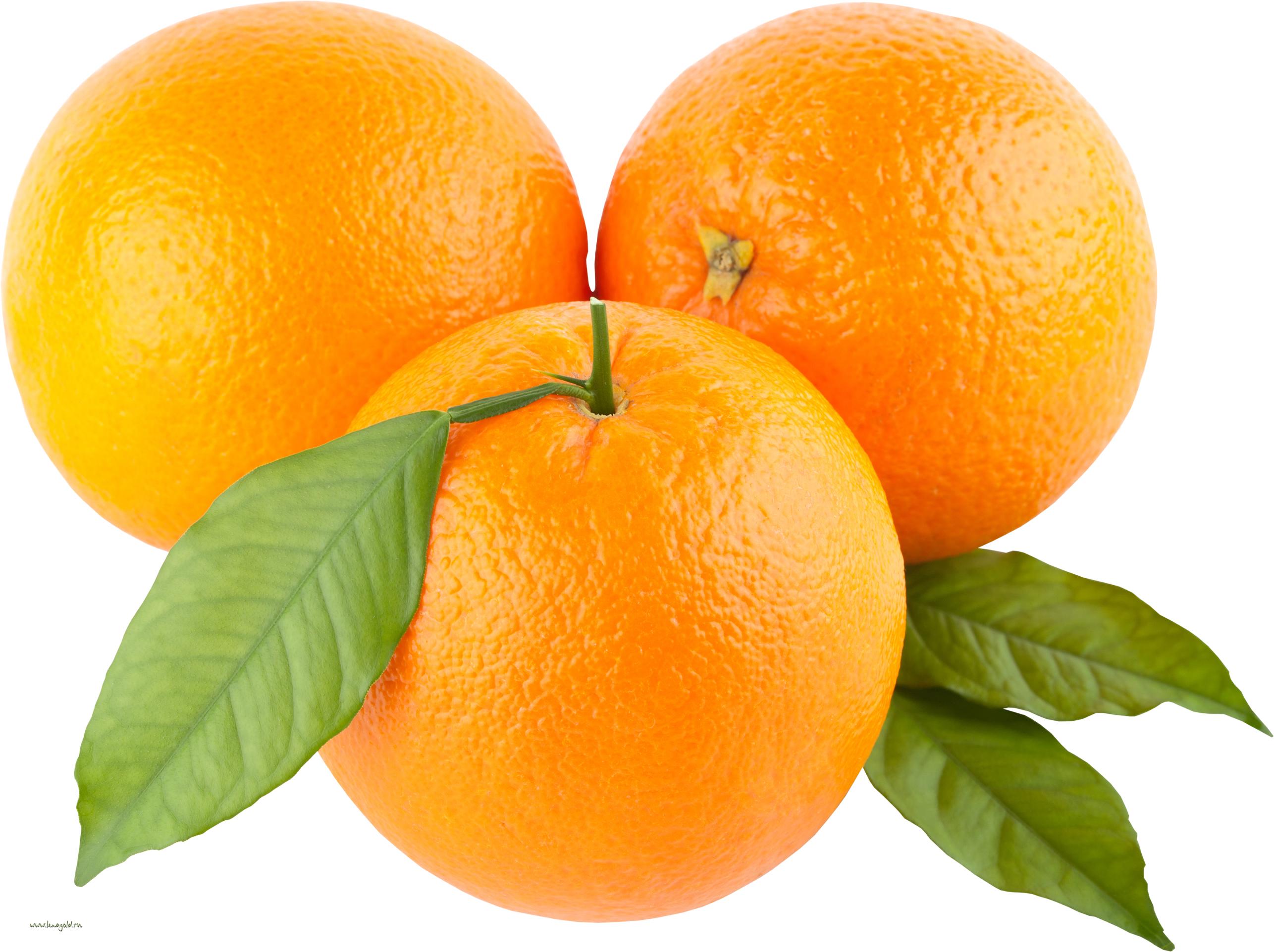 апельсины, фото, обои, клипарт, orange