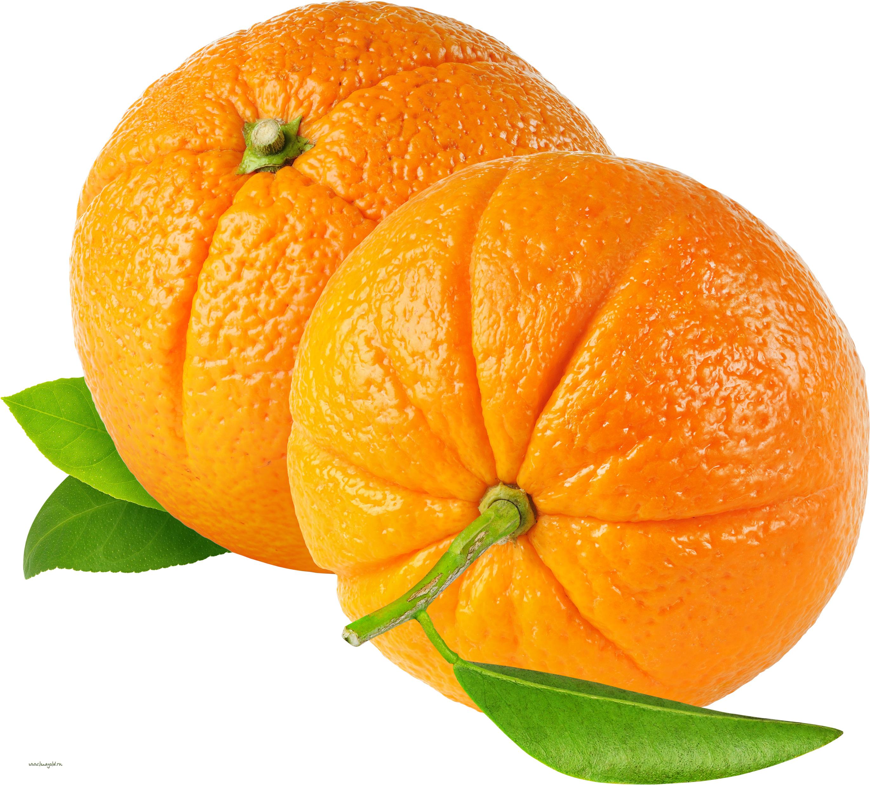 апельсины, клипарт, фото, обои, скачать, orange