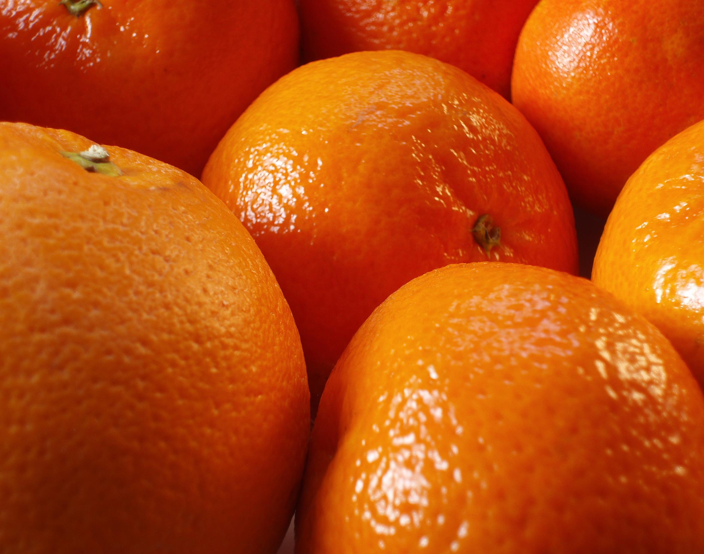 Апельсины, фото, обои, скачать, orange