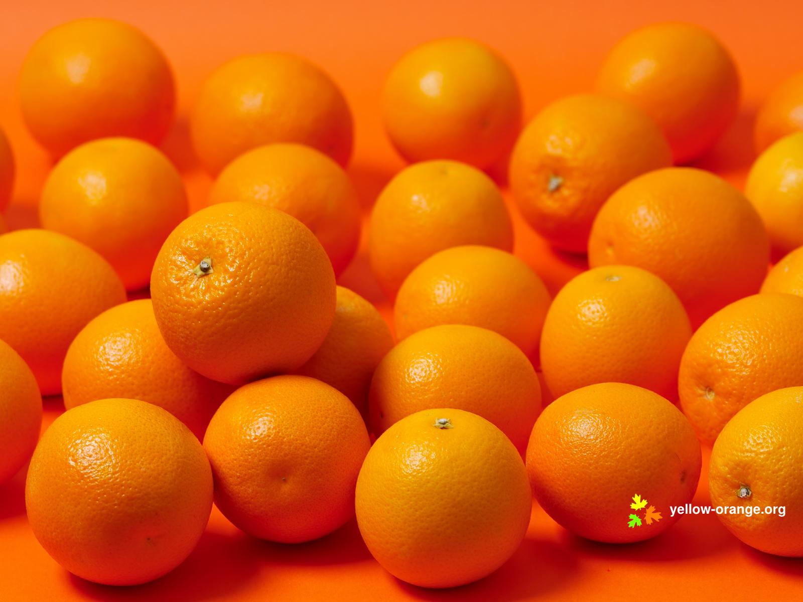 Фото апельсины, обои на рабочий стол