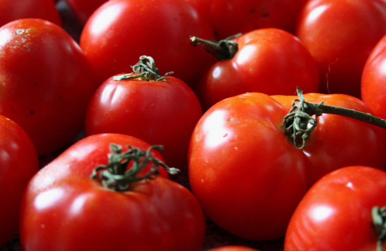 Помидоры, фото, обои для рабочего стола, томат