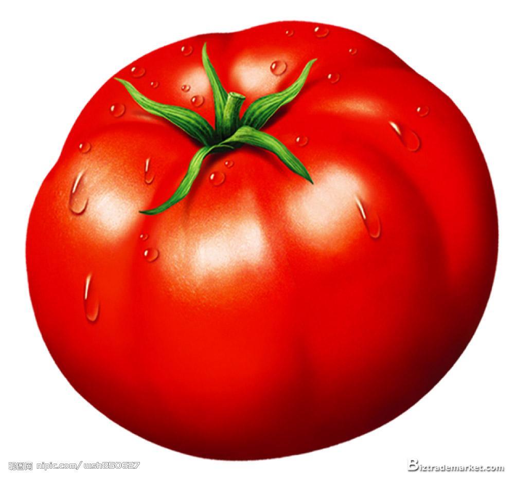 Помидор, клипарт, скачать фото, томат