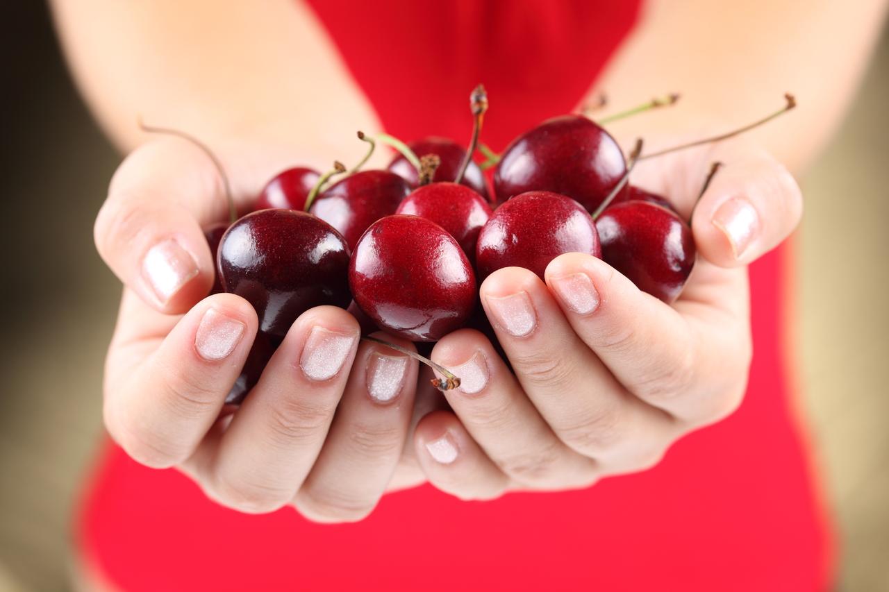горсьт вишни в руках, фото, обои для рабочего стола