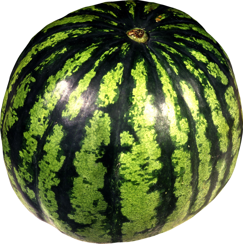зеленый полосатый арбуз, фото, клипарт