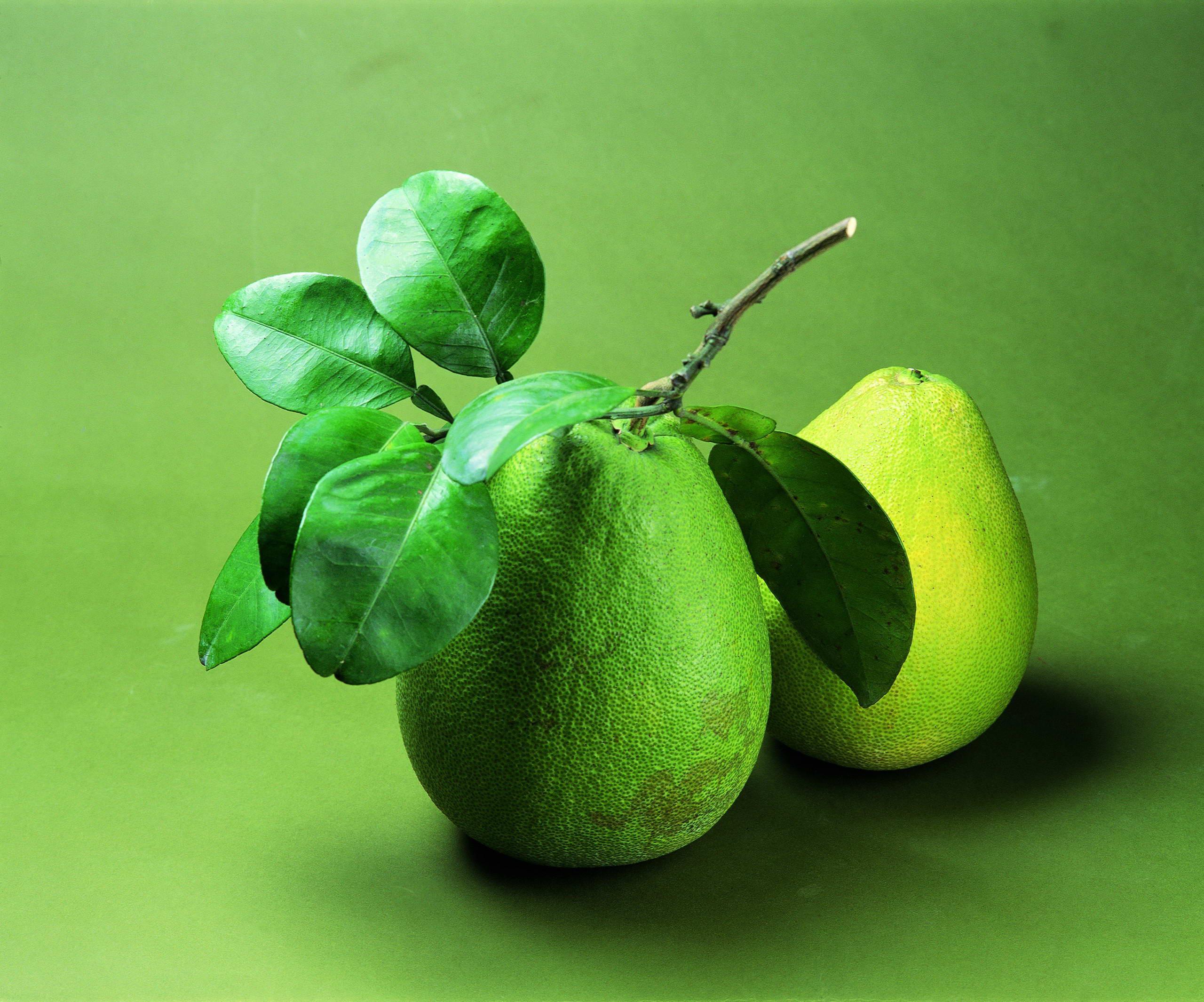 зеленые груши, фото, обои на рабочий стол