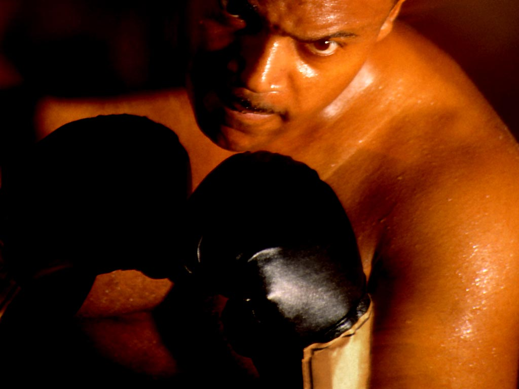 Бокс, фото, боксер, обои на рабочий стол