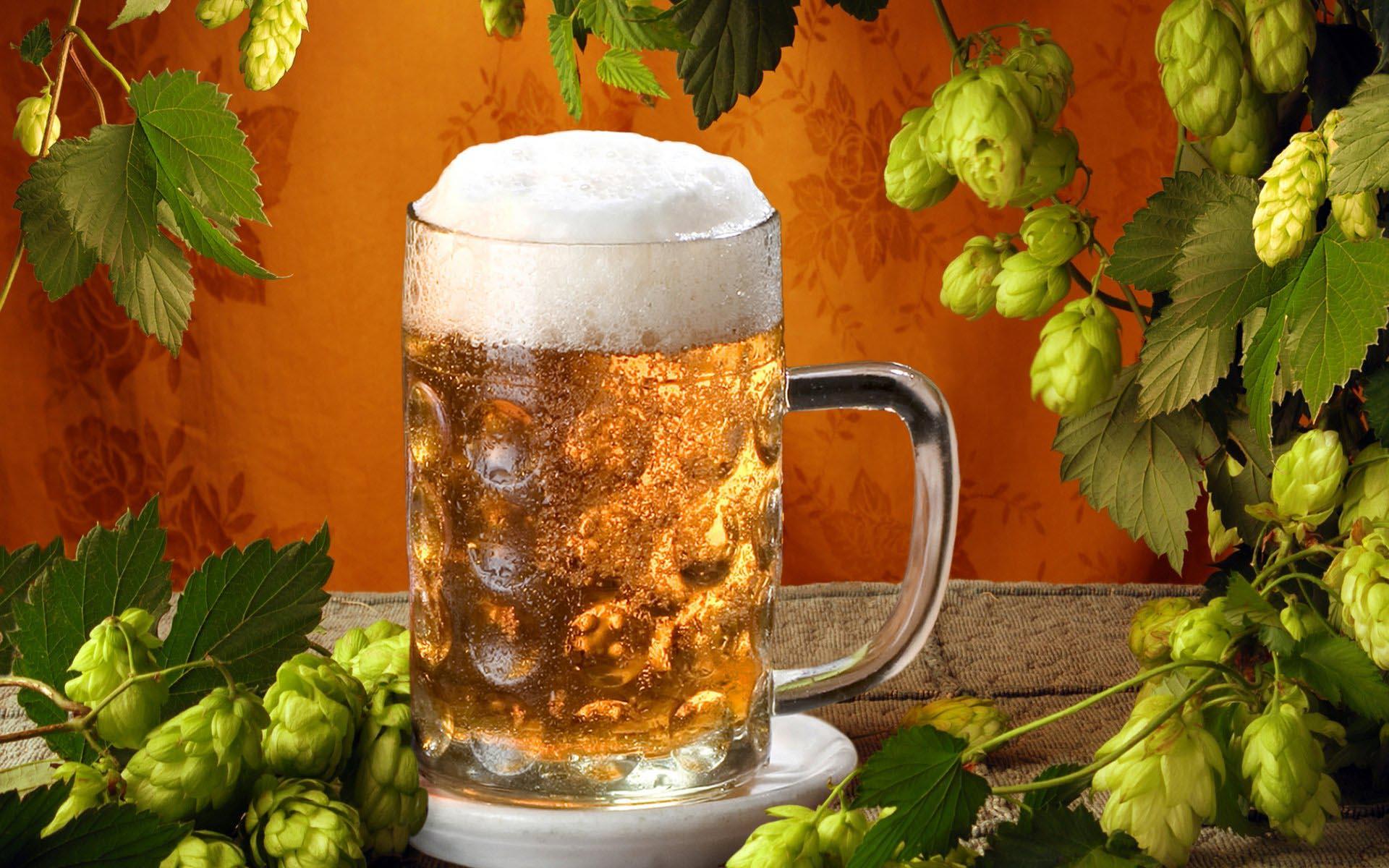 кружка пива, фото, хмель, обои для рабочего стола