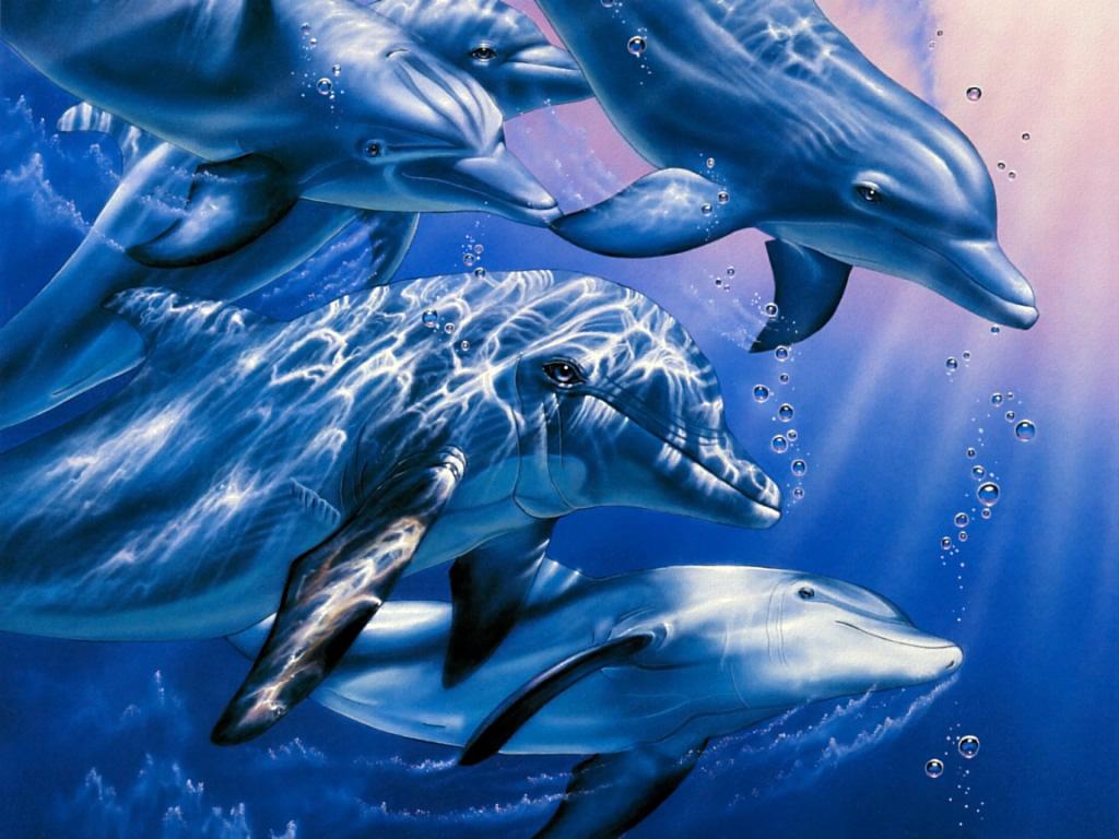 Дельфины в воде, скачать фото, обои на рабочий стол