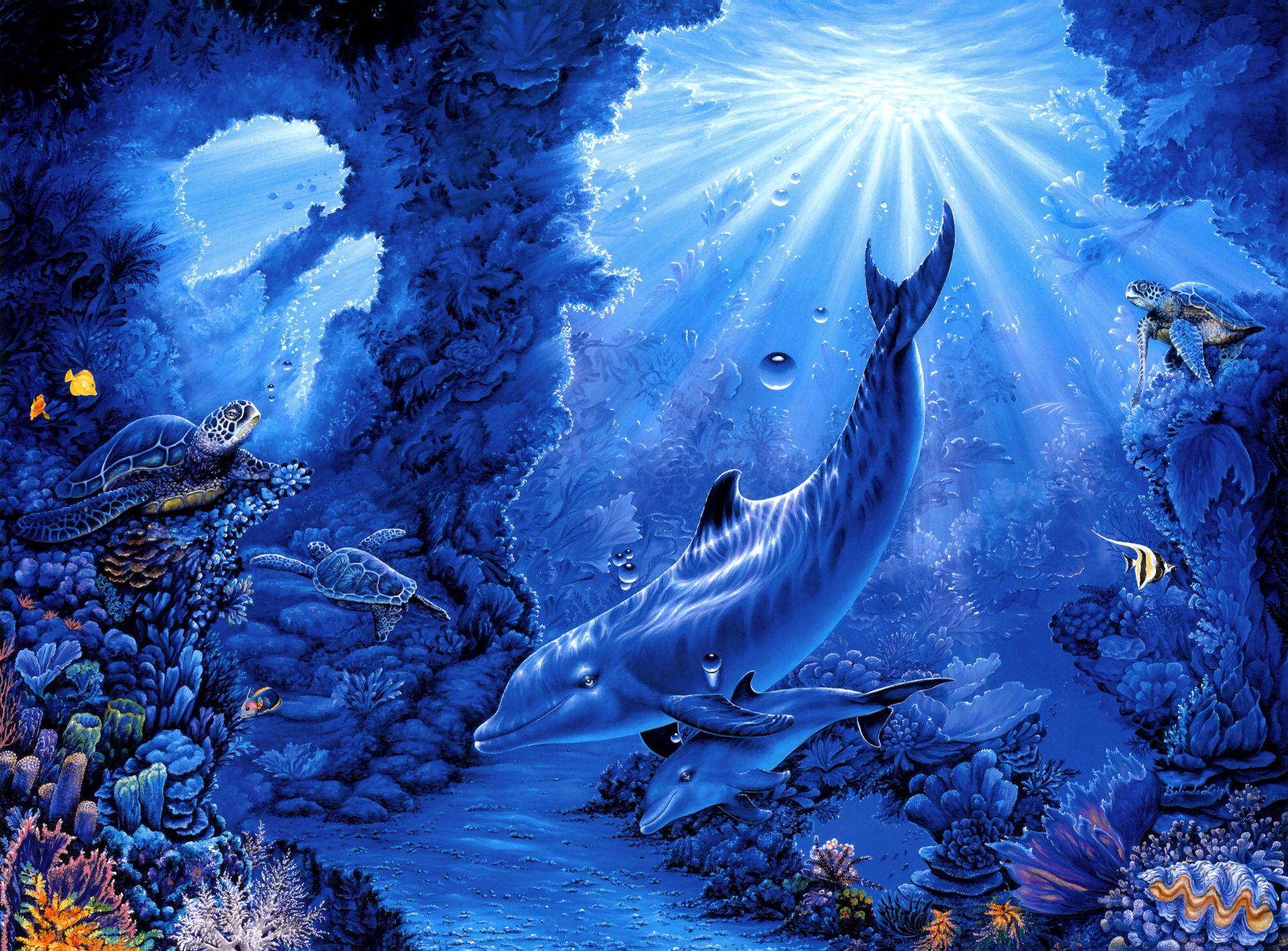 море, глубина, фото, рыбы, свет, обои для рабочего стола