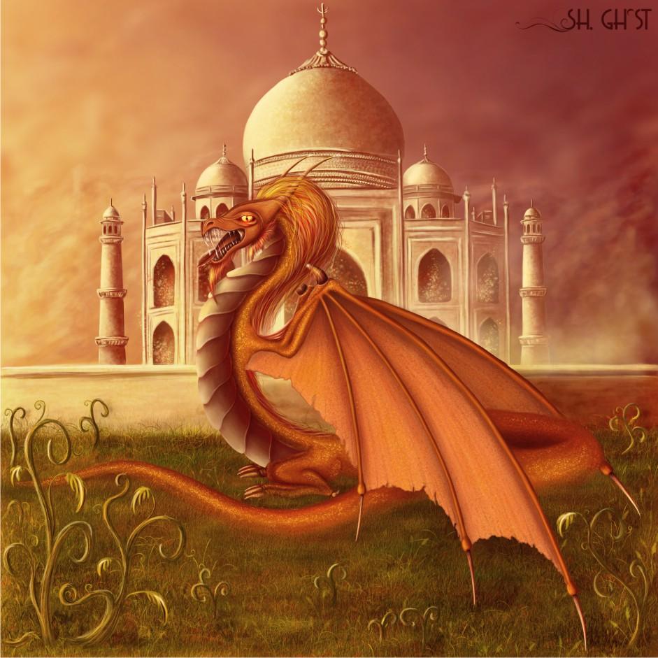 оранжевый дракон фото, обои для рабочего стола