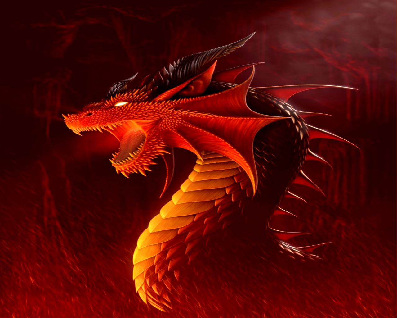 красный огненный дракон, фото, обои для рабочего стола, скачать бесплатно