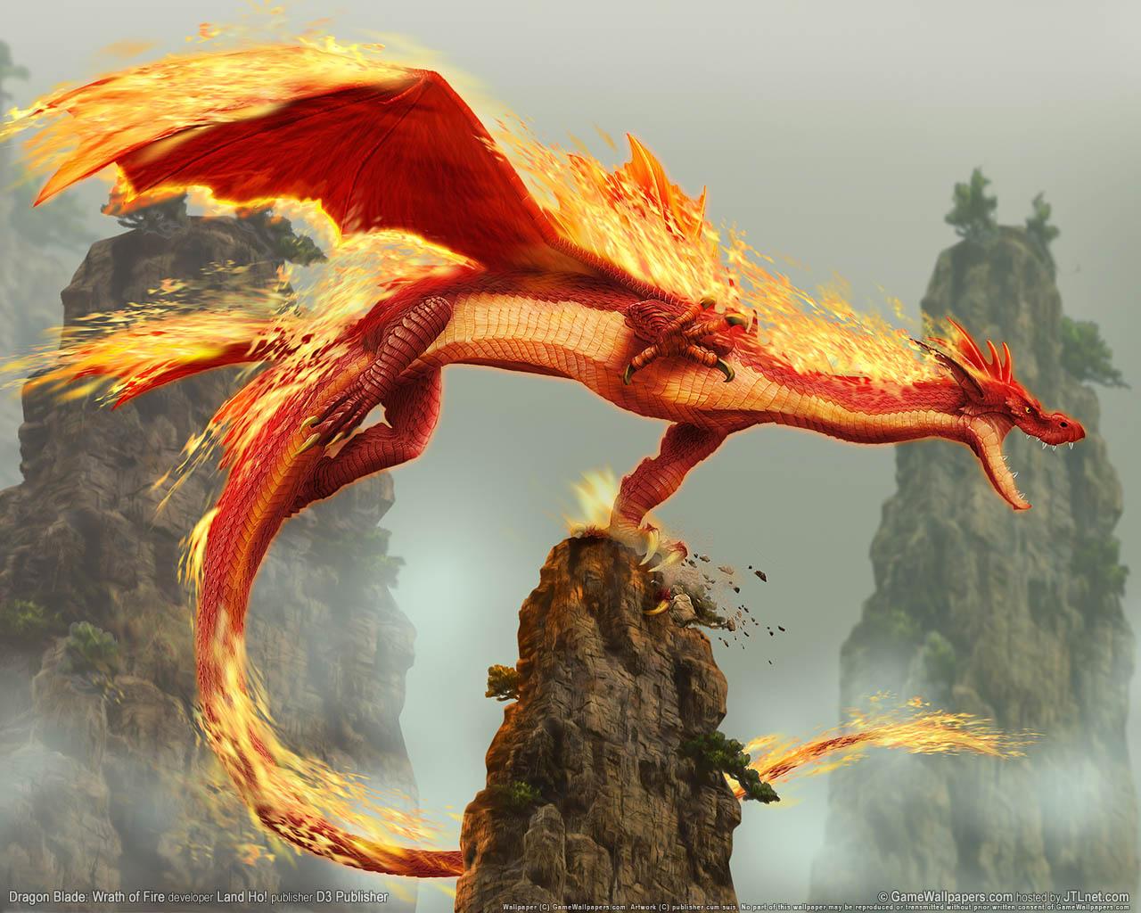 orange dragon wallpaper, обои для рабочего стола, дракон, оранжевый