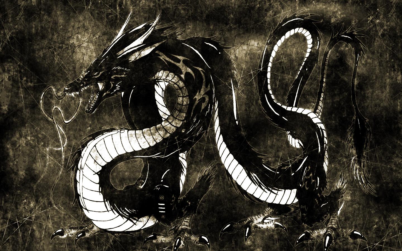 черный дракон фото, black dragon wallpaper, скачать обои для рабочего стола