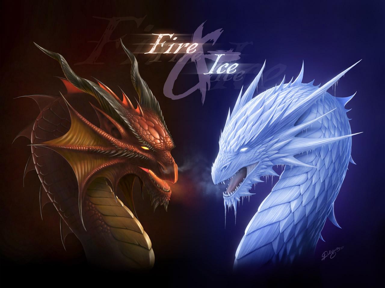 fire dragon, ice dragon, wallpaper, скачать обои для рабочего стола