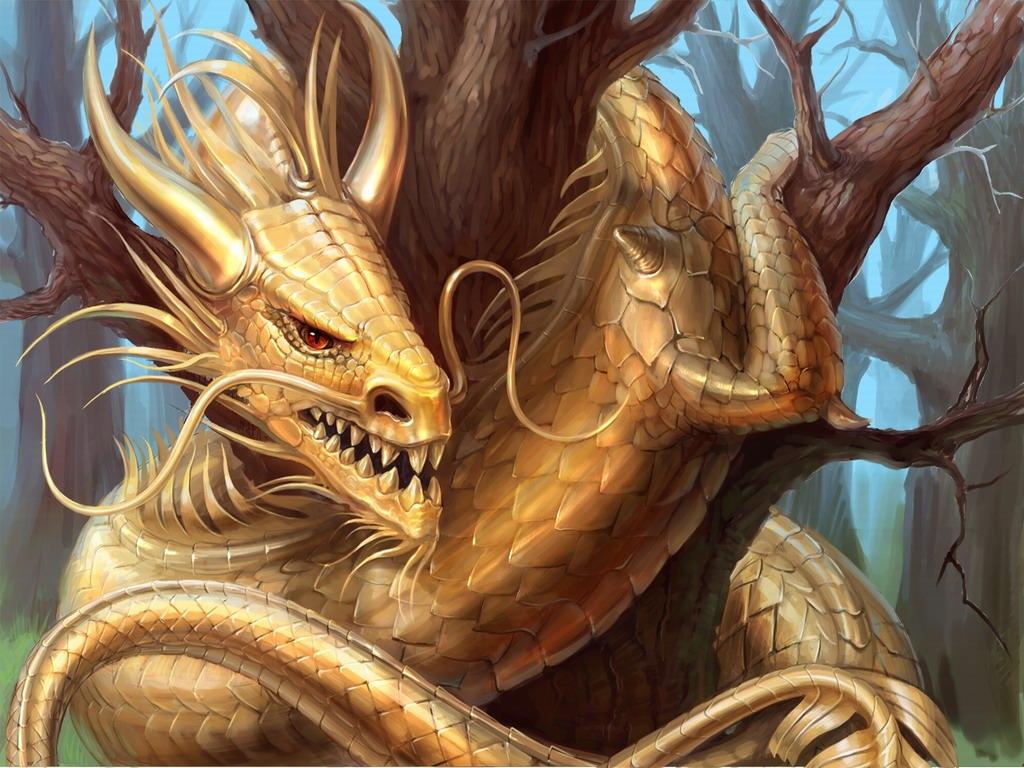 золотой дракон, фото, обои на рабочий стол, скачать
