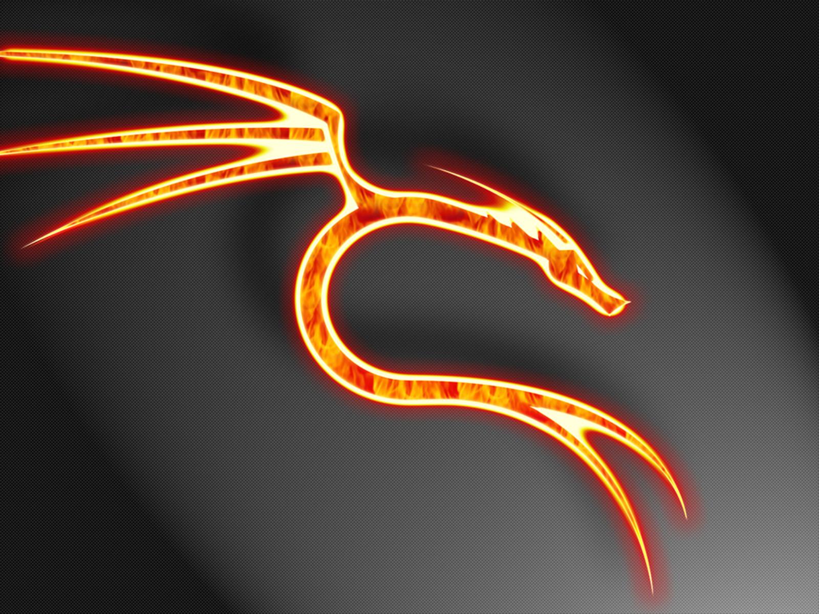 огненный дракон, обои для рабочего стола, dragon fire