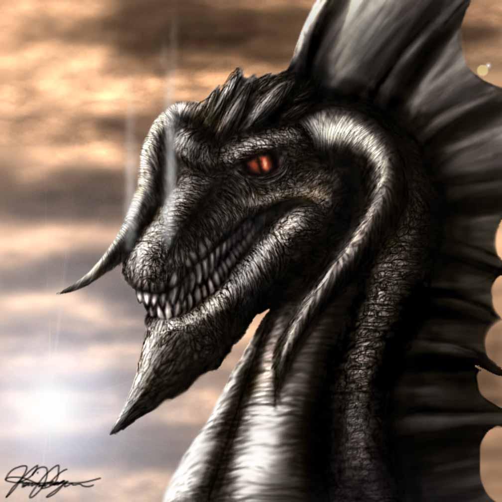 голова черного дракона, фото обои, рисунок на рабочий стол