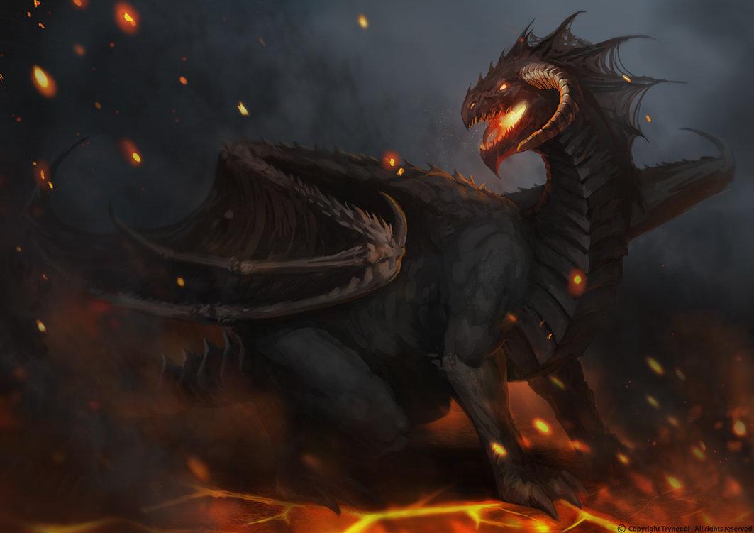черный дракон, большой дракон, фото, обои для рабчоего стола, скачать, black dragon
