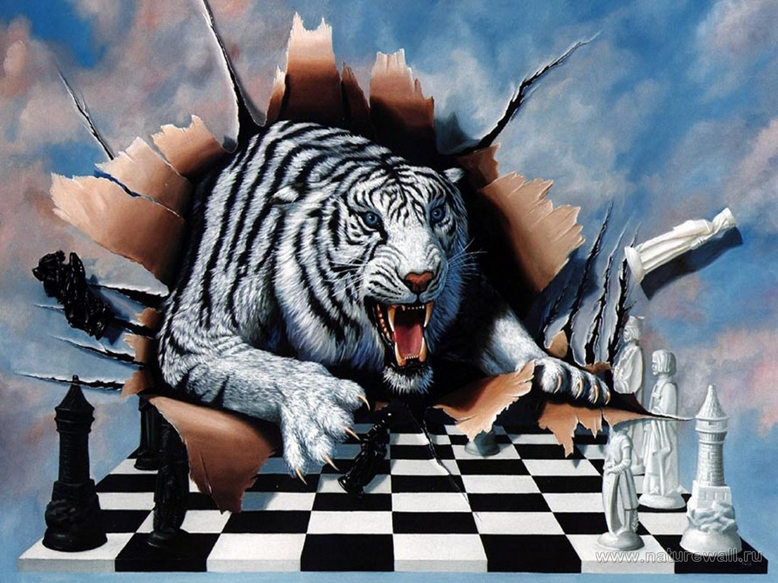 обо на рабочий стол, тигр рвет бумагу, шахматная доска