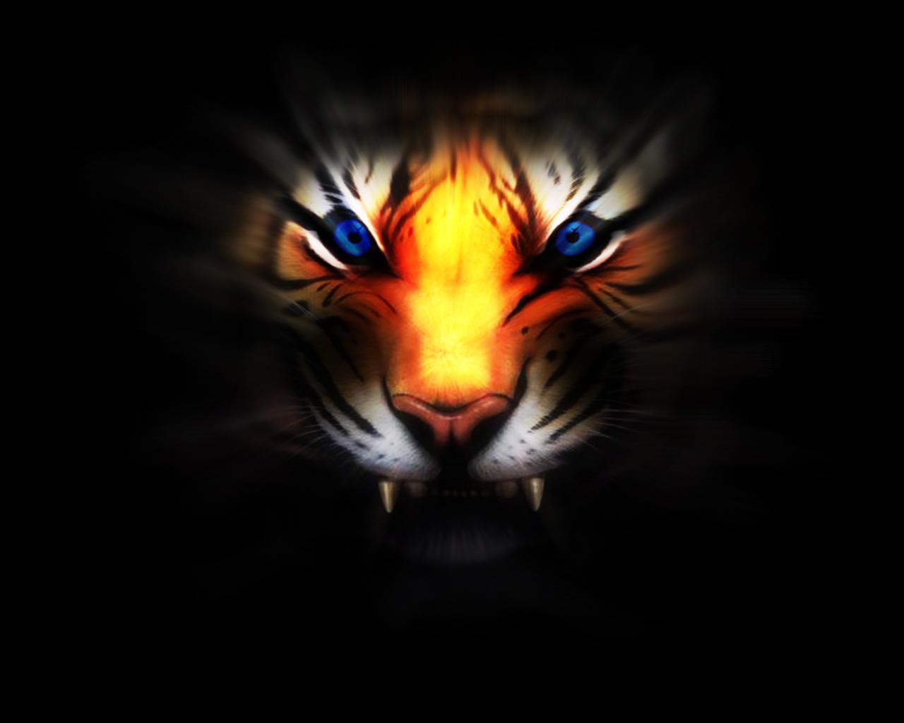 тигр свет, обои для рабочего стола