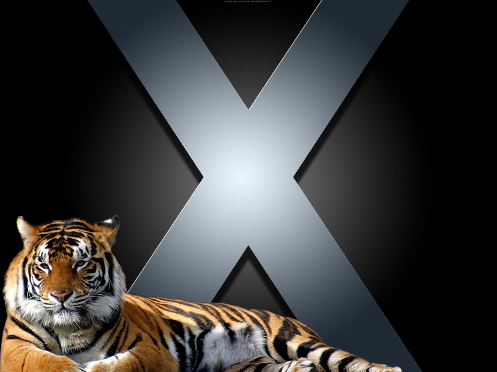 X wallpaper, обои для рабочего стола, тигр